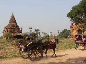 horse-and-cart-bagan